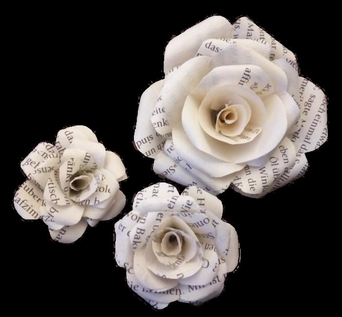 Rosen aus Buchseiten